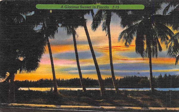 A Glorious Sunset in Florida, USA Postcard