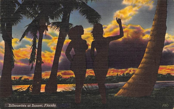 Silhouettes at Sunset, FL, USA Florida Postcard