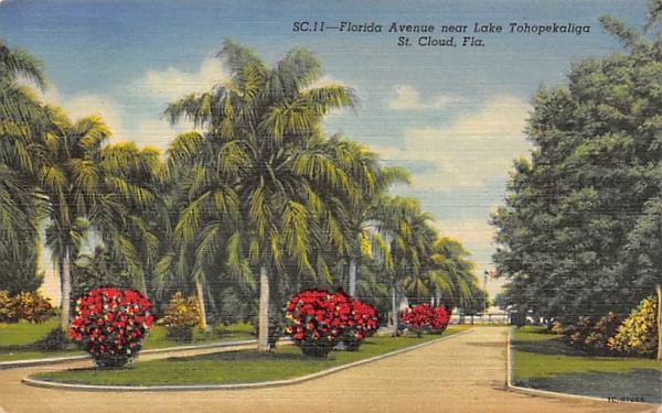 Florida Avenue near Lake Tohopekaliga Postcard