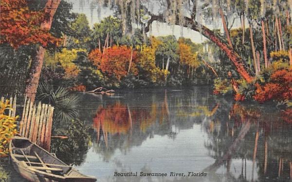 Beautiful Suwannee River, FL, USA Florida Postcard