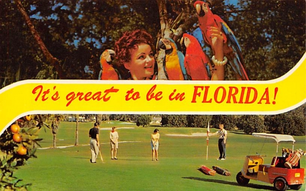 It's Great to be in Florida, USA Postcard