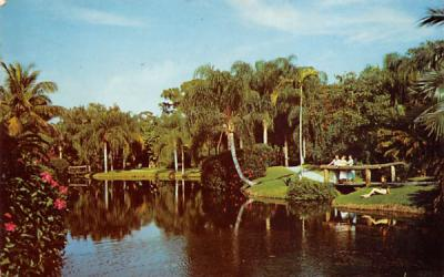 In Tropical Saracota, FL, USA Florida Postcard