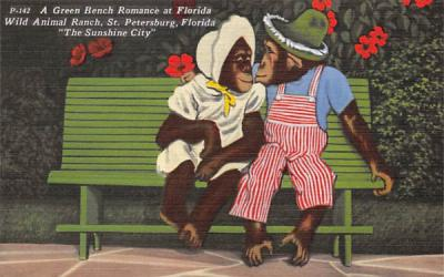 A Green Bench Romance at Florida Wild Animal Ranch Postcard