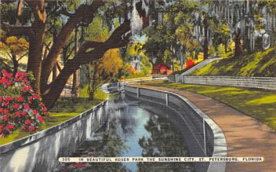 In Beautiful Roser Park the Sunshine City St Petersburg, Florida Postcard