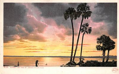 Sunset on the St. John's River, FL, USA St Johns River, Florida Postcard