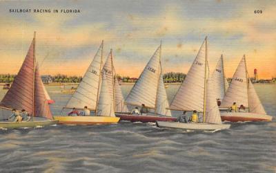 Sailboat Racing in FL, USA Florida Postcard