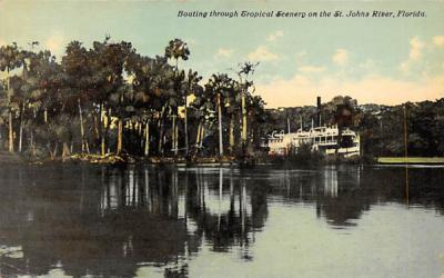 Scenery on the St. John's River, FL, USA St Johns River, Florida Postcard