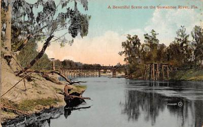 A Beautiful Scene on the Suwannee River Florida Postcard
