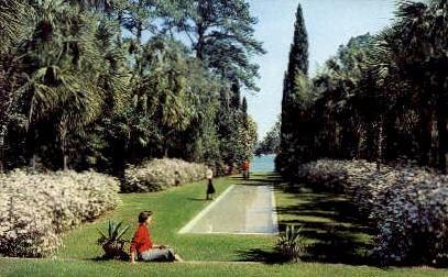 Killearn Gardens - Tallahassee, Florida FL Postcard