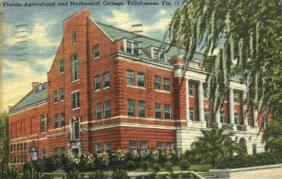 Agricultural and Mechanical College - Tallahassee, Florida FL Postcard