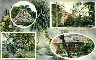 City Park - Tampa, Florida FL Postcard