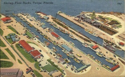 Shrimp Fleet Docks - Tampa, Florida FL Postcard