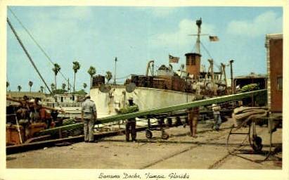 Banana Market - Tampa, Florida FL Postcard