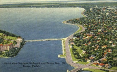 Tampa Bay - Florida FL Postcard