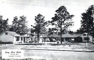 Gray Moss Motel - Tampa, Florida FL Postcard