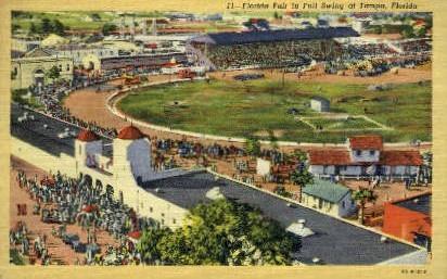 Florida Fair - Tampa Postcard