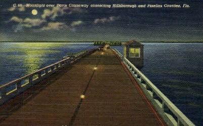 Davis Causeway - Tampa, Florida FL Postcard
