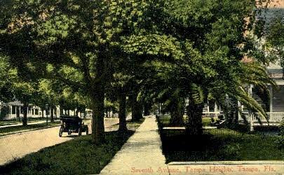 Seventh Avenue - Tampa, Florida FL Postcard