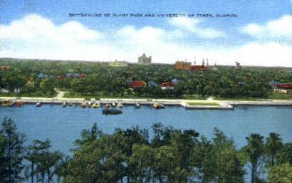 Plant Park - Tampa, Florida FL Postcard