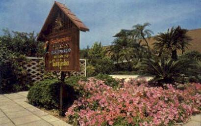 Busch Gardens - Tampa, Florida FL Postcard