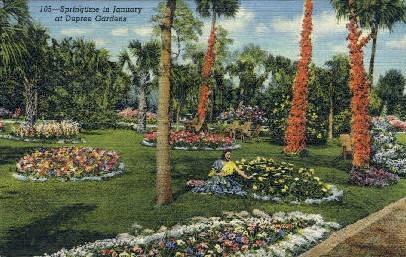 Dupree Gardens - Tampa, Florida FL Postcard