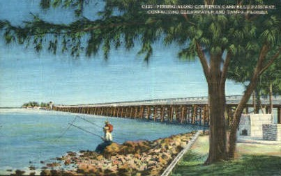 Courtney Campbell Parkway - Tampa, Florida FL Postcard