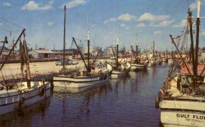 Shrimp and Fishing Boats - Tampa, Florida FL Postcard