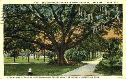 City Park - Tampa, Florida FL Postcard