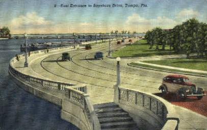 Bayshore Drive - Tampa, Florida FL Postcard