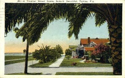 Suburb - Tampa, Florida FL Postcard