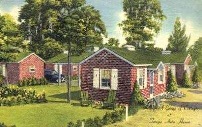 Tampa Auto Haven - Florida FL Postcard