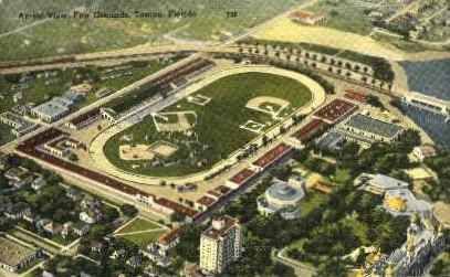Fair Grounds - Tampa, Florida FL Postcard