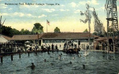 Sulphur Springs - Tampa, Florida FL Postcard