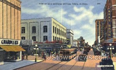 Business Section - Tampa, Florida FL Postcard