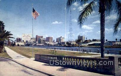 Tony Janis Park - Tampa, Florida FL Postcard