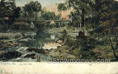 Six Mile Creek  - Tampa, Florida FL Postcard