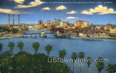 Hillsborough River - Tampa, Florida FL Postcard