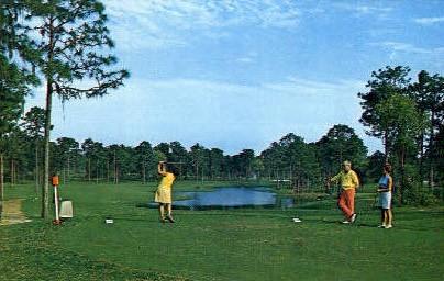 Innisbrook - Tarpon Springs, Florida FL Postcard