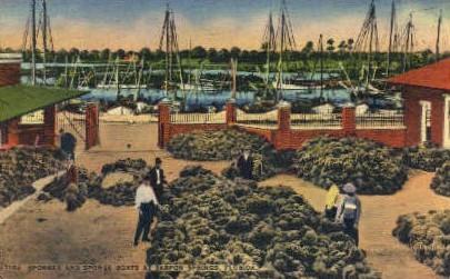 Sponge Boats - Tarpon Springs, Florida FL Postcard