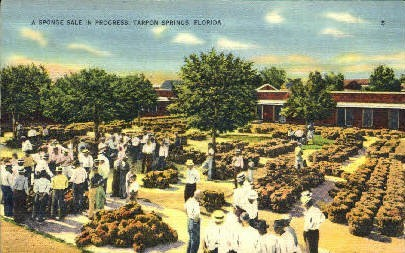 Sponge Sale - Tarpon Springs, Florida FL Postcard