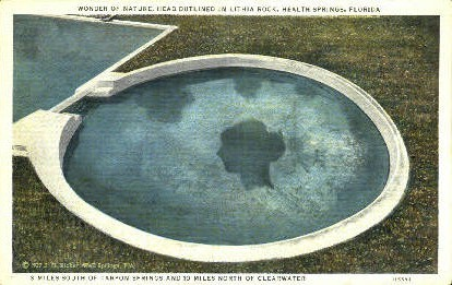 Health Springs, Lithia Rock - Tarpon Springs, Florida FL Postcard