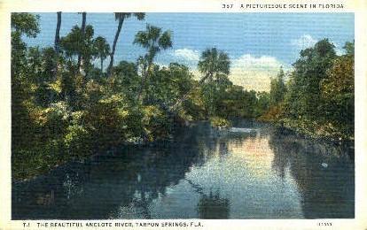 Anclote River  - Tarpon Springs, Florida FL Postcard