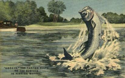 Tarpon Fish - Tarpon Springs, Florida FL Postcard