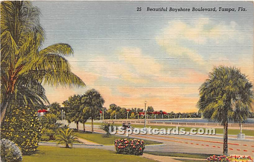 Bayshore Boulevard - Tampa, Florida FL Postcard
