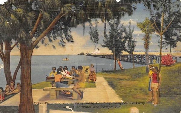 Picnicking and Fishing, Courtney Campbell Parkway Tampa, Florida Postcard