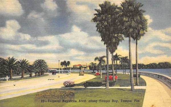 Tropicla Bayshore Blvd. along Tampa Bay Florida Postcard