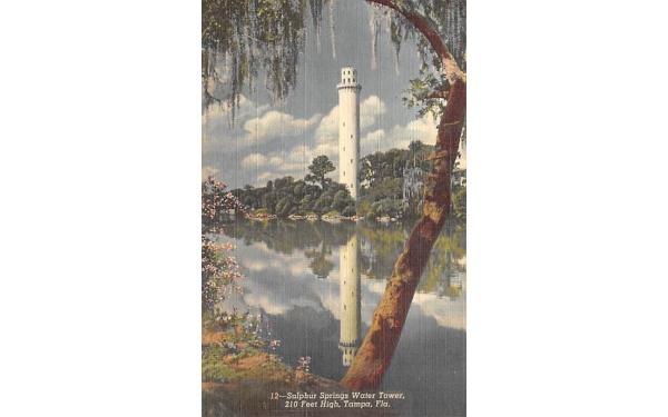 Sulphur Springs Water Tower Tampa, Florida Postcard