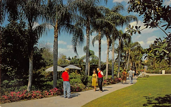 One of the many beautiful walkways at Busch Gardens Tampa, Florida Postcard