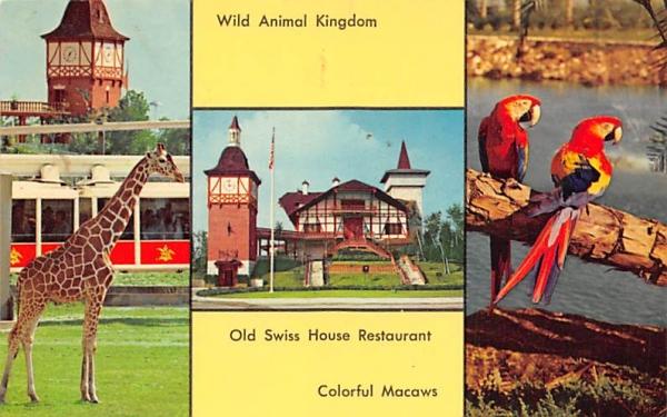 Southern Home of Anheuser-Busch, INC Tampa, Florida Postcard