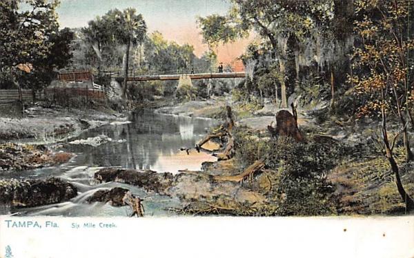 Six Mile Creek Tampa, Florida Postcard